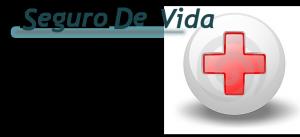 seguro_vida_02-9-2011